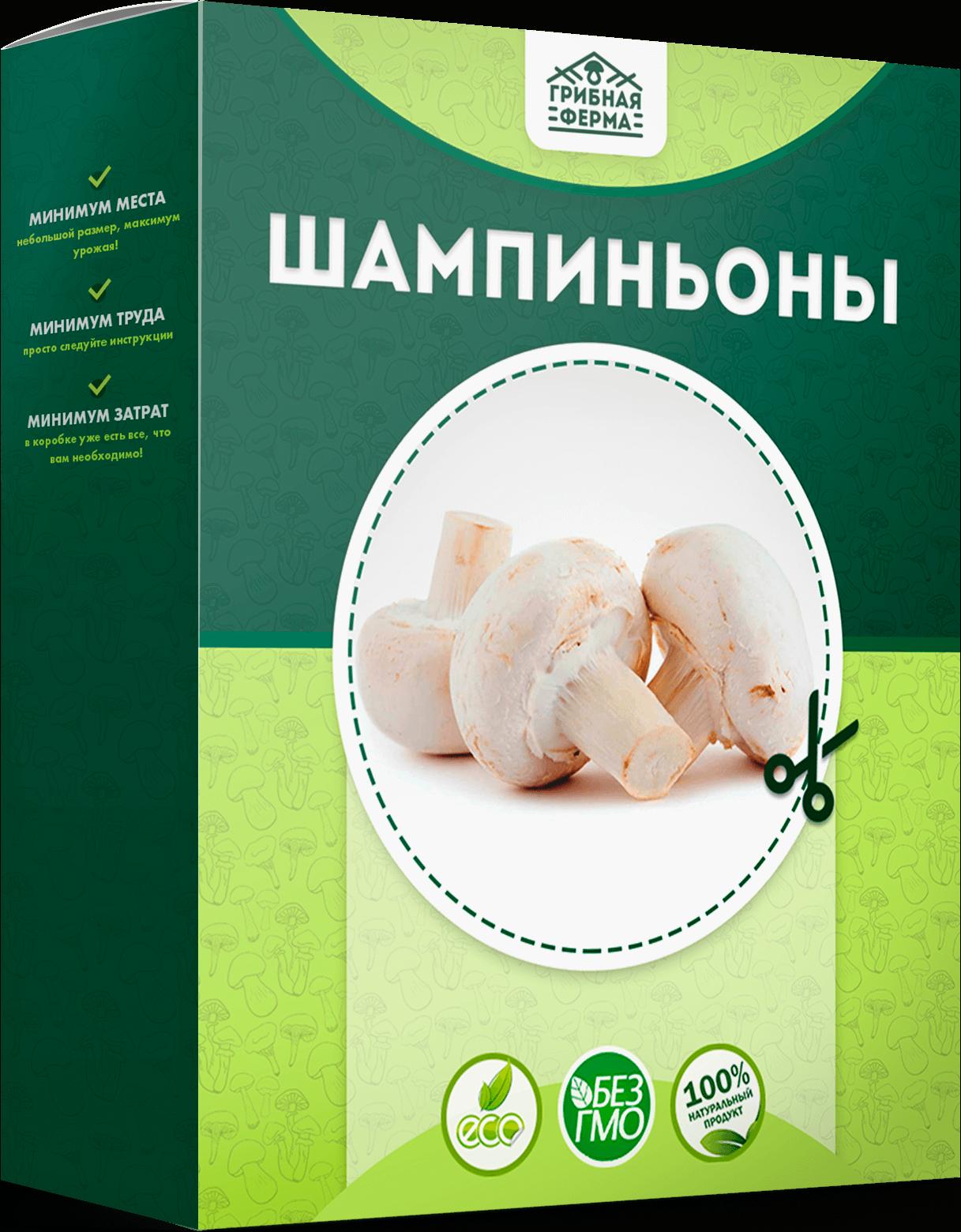 реальные отзывы о грибах в грибной корзине, выращенных в домашних условиях + фото 8