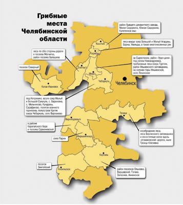 куда поехать за опятами в Челябинской области
