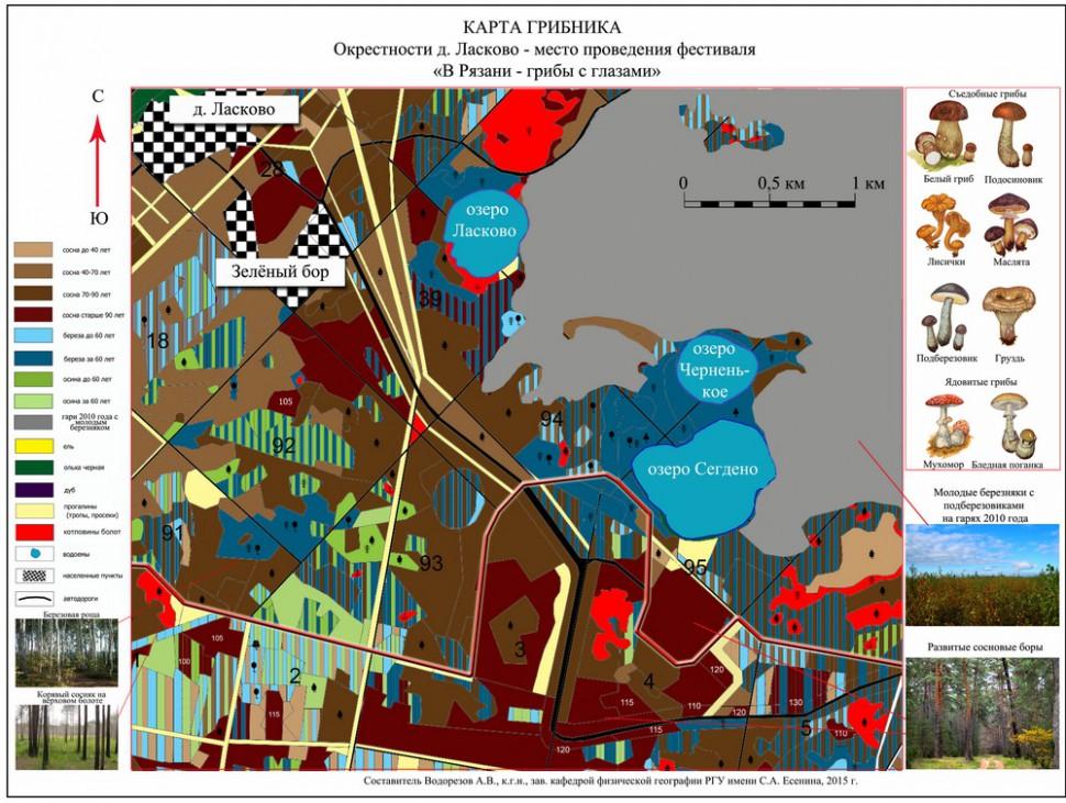 грибные места + карта фото