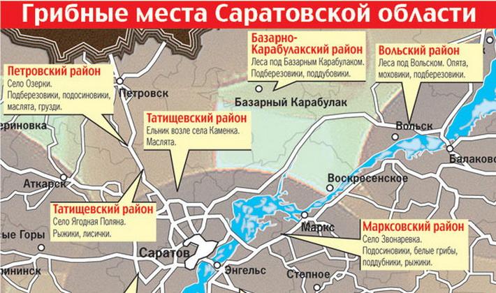 грибные места на карте Саратовской области 2019, фото 2