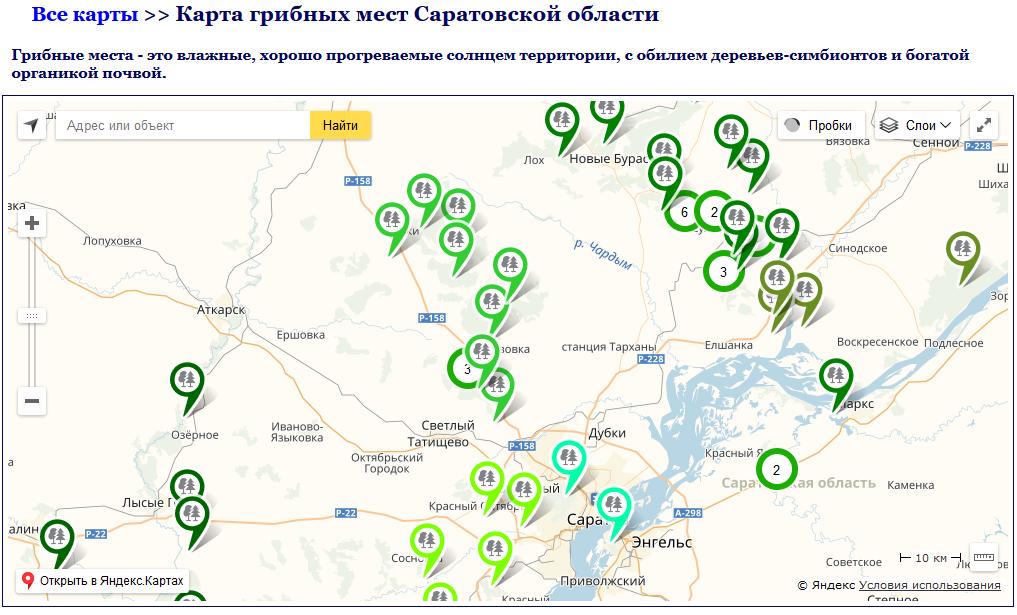 грибные места на карте Саратовской области 2019, фото 3