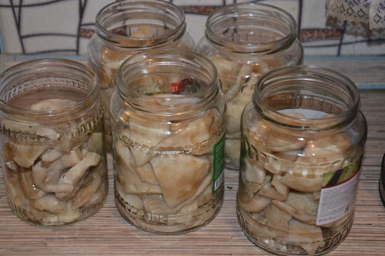 маринованные грузди в коричном маринаде, рецепт + фото