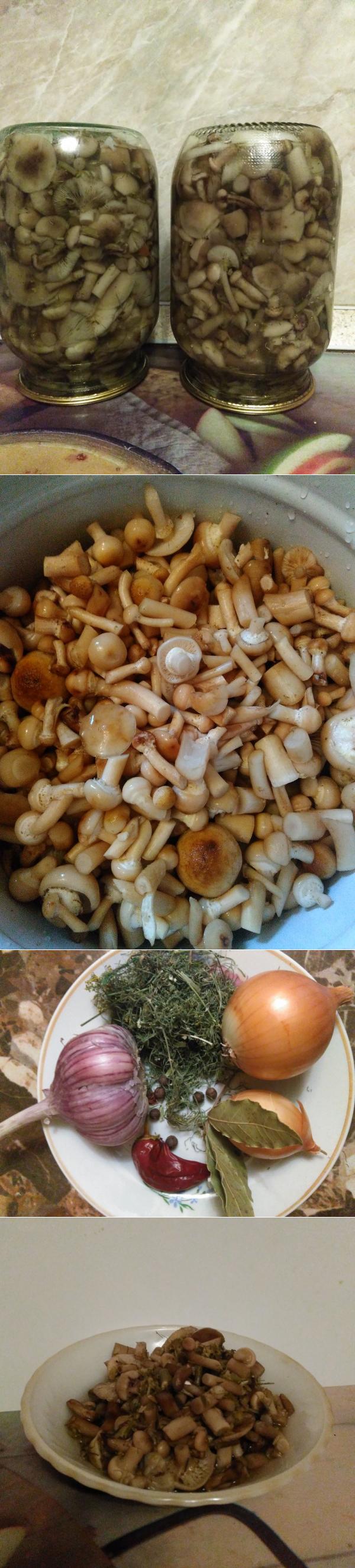 маринованные опята с растительным маслом и яблочным уксусом