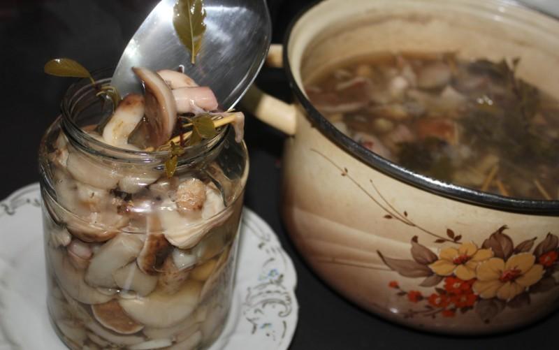 третий рецепт - маринованные маслята с пряностями в масле
