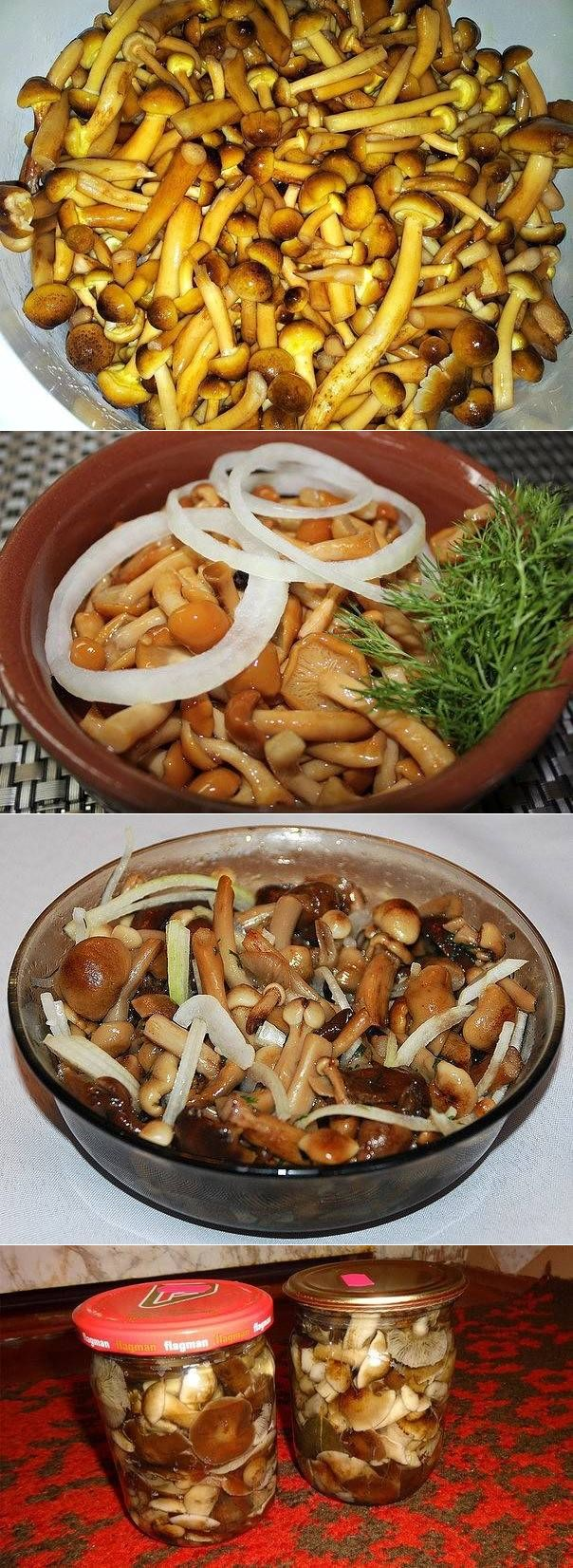 маринованные осенние опята с чесноком, рецепт + фото
