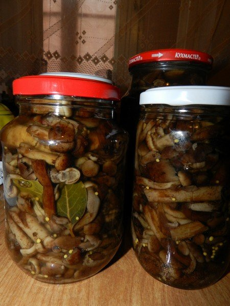 как приготовить осенние маринованные опята с листьями смородиной и хреном