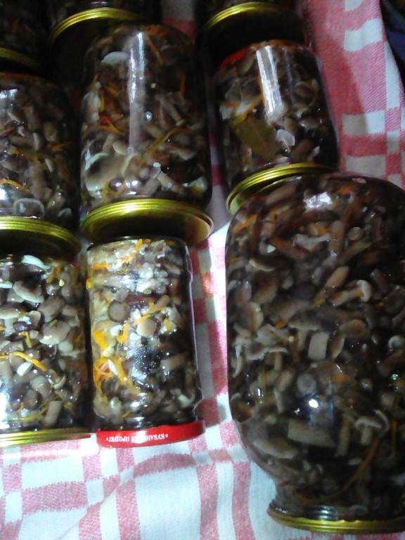 осенние опята маринованные с зёрнами горчицы и рафинированным маслом