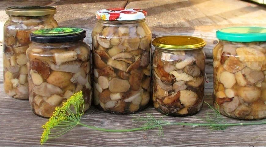 вкусный и простой рецепт маринованных белых грибов, как приготовить