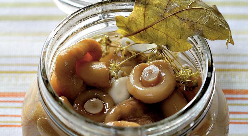 третий рецепт - небольшие грузди, маринованные с уксусом