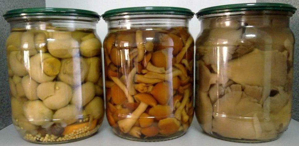 маринованные грибы, какие самые вкусные? Через какое время можно есть