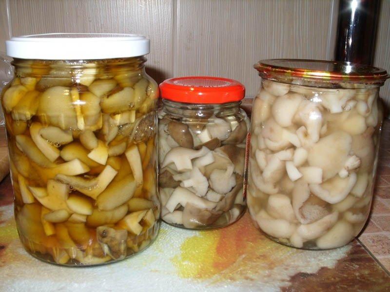 маринованные маслята на зиму с чесноком и укропом