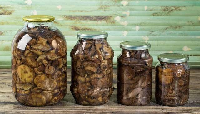 маринованные свинушки на зиму, рецепты с фото 2