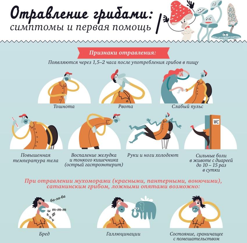 отравление грибами в Московской области (Подмосковье) 2019, известный случай