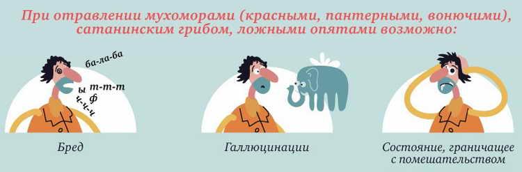 отравление грибами в Воронежской области 2019 фото 2