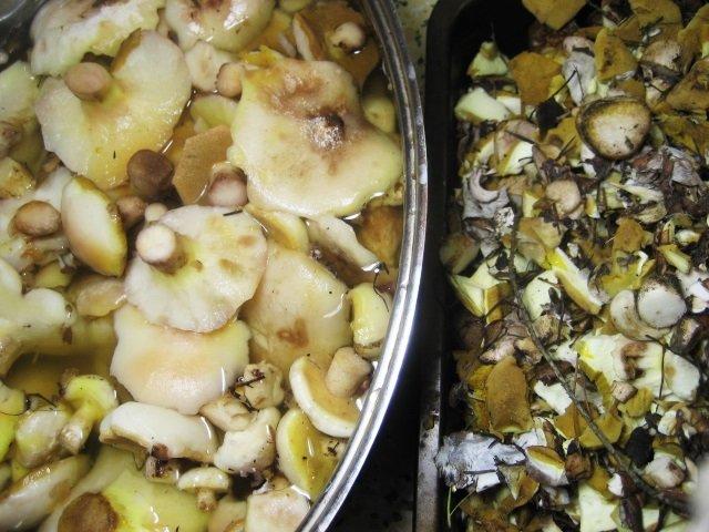 маринование маслят с лимонной кислотой и чесноком на зиму