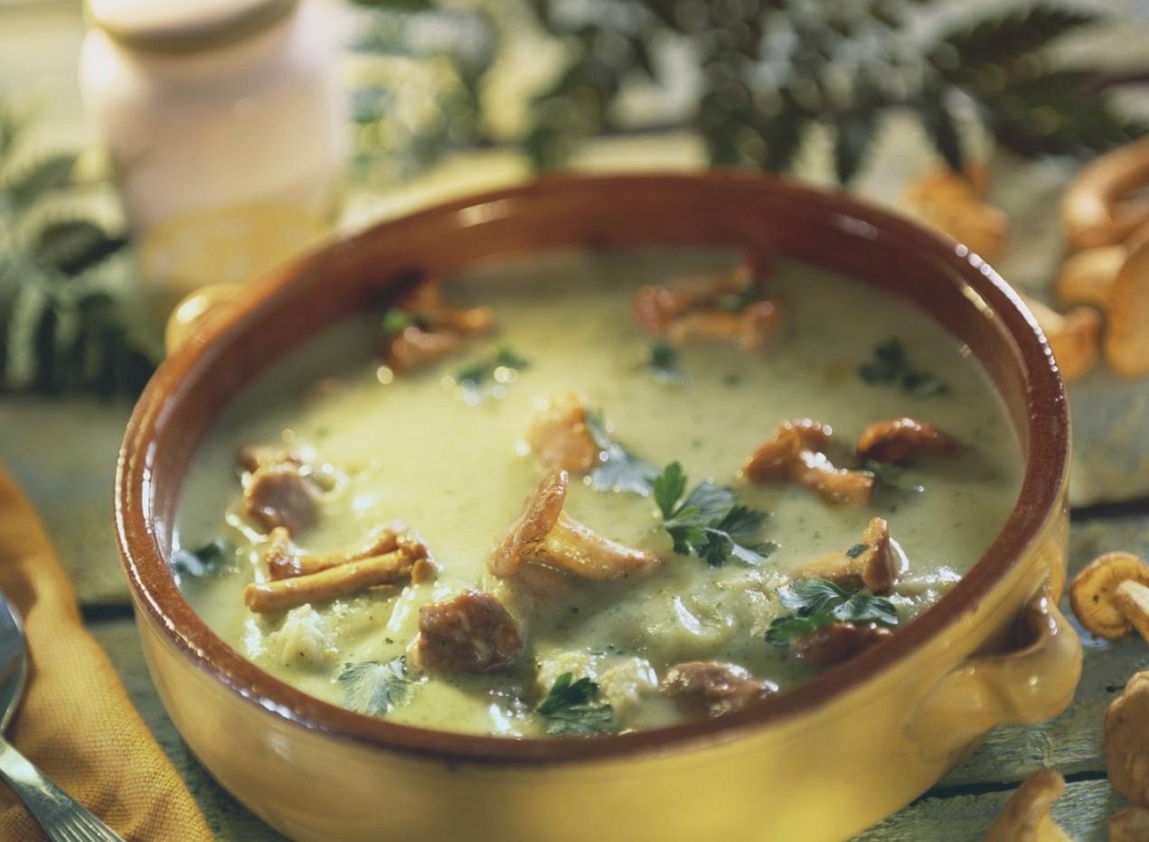 Суп из опят. 3 варианта приготовления