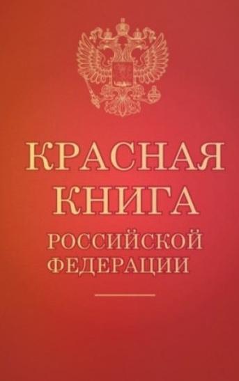 Решеточник Красный – диковинный житель российского юга