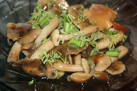 Салат с маринованными опятами 11 лучших рецептов