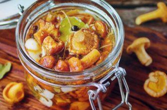 Лисички соленые – простые и вкусные