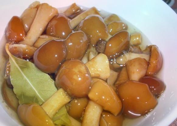 Сколько варить маслята перед жаркой, маринованием или заморозкой