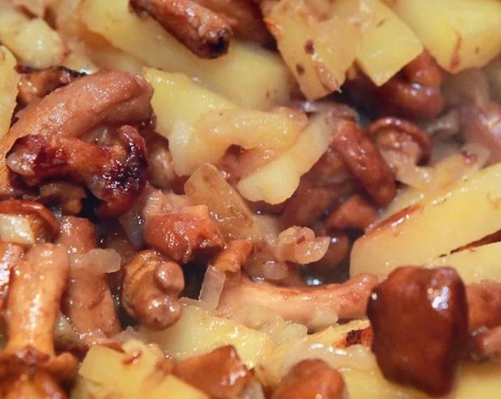 Как готовить опята вкусно, сытно и недорого