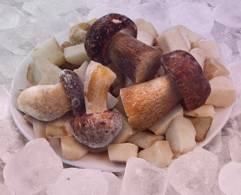Как правильно заморозить собранные грибы