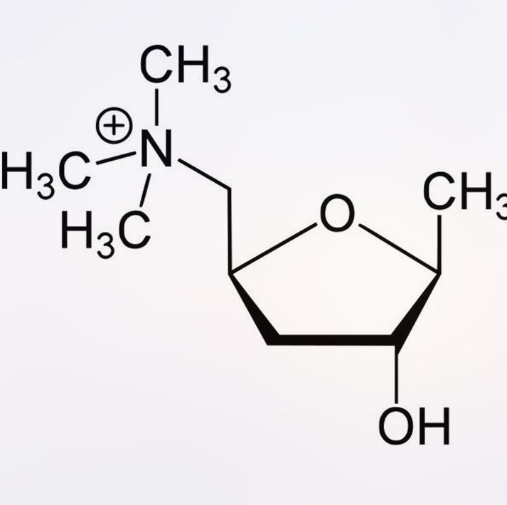 Схема химической формулы Мускарина