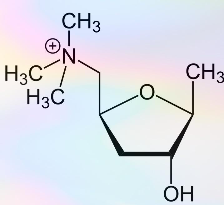 Схема химической формулы Мускаруфина