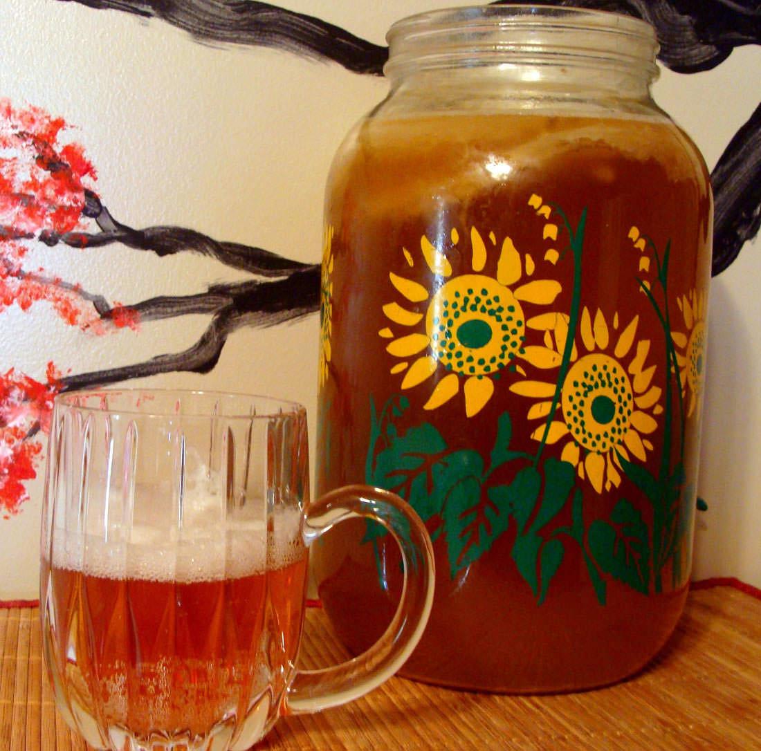 Чайный гриб – польза и вред популярного напитка | WMJ.ru