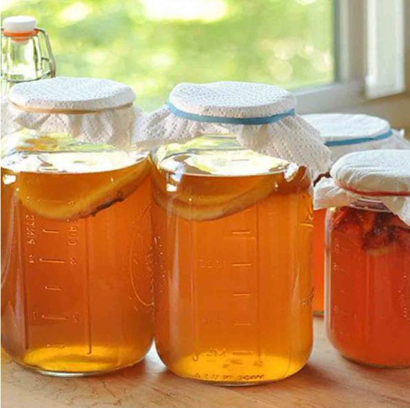 Можно ли выращивать чайный гриб в пластиковой бутылке - Журнал садовода  Ryazanameli.ru