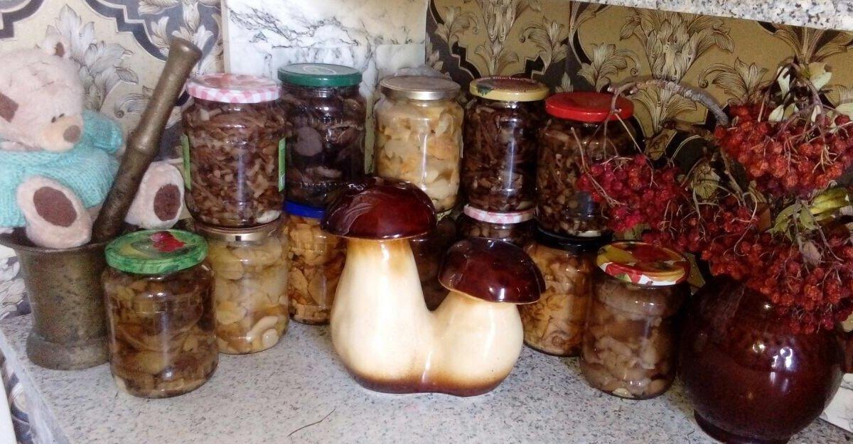 Продам грибы, Маринованные грибочки собственного сбора и закатки, Опята-300  Ассорти — Доска объявлений УниДоски