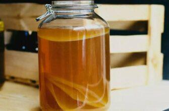 Как сохранить чайный гриб до следующего лета, и какие правила хранения существуют?