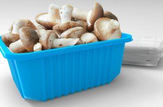 Упаковка для грибов